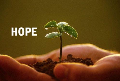 Harapan